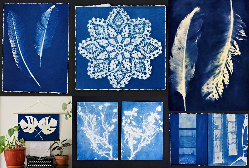 Cyanotypes in preparation for my Sketchbook Project 2019-2020